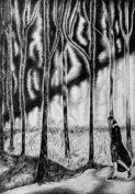 Jeudi 6 au 30 Avril – Gravitaciones exposition de Anne Woisson
