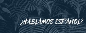 Mardi 19 – 18:30 à 19:45 hrs – Taller de conversación en español